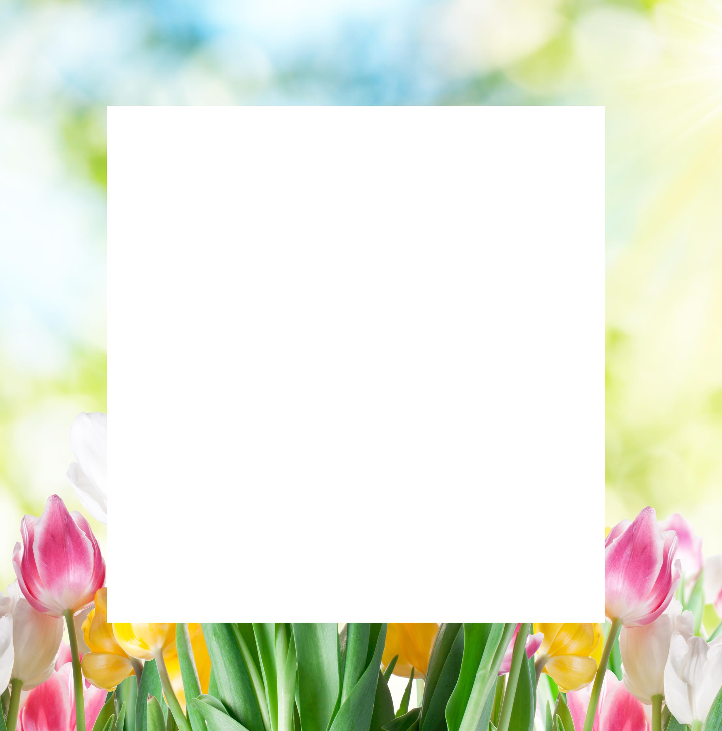 Decoframefolie Frühjahr